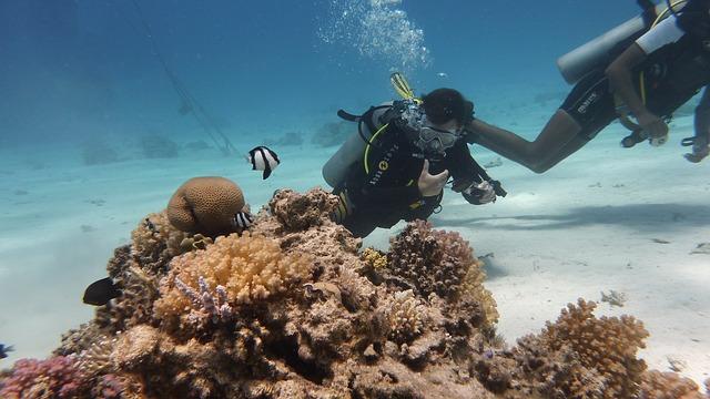 Unterwasserfotografen